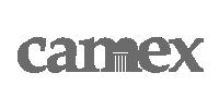 Camex Logo